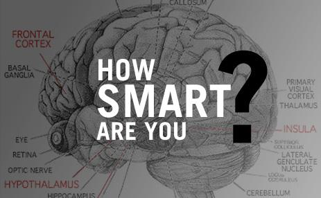 Image result for pictures of how smart are you